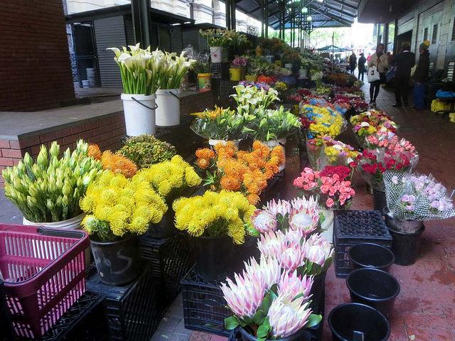 cape town flower market